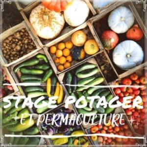Stage potager et permaculture @ ferme Keruzerh